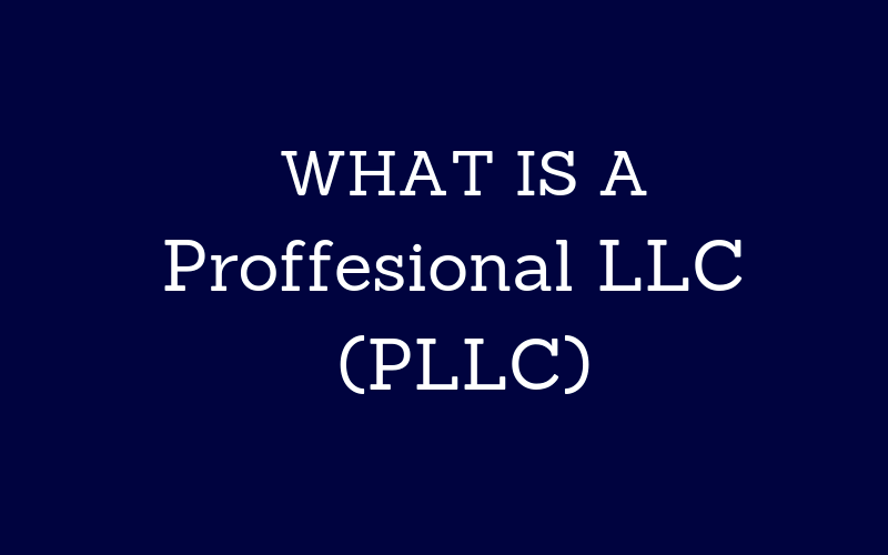 What is a Professional Limited Liability Company?